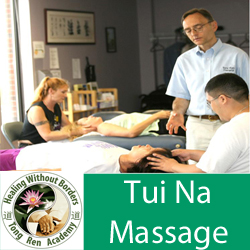 Tui Na Medical Massage Therapy Workshop - Day 1