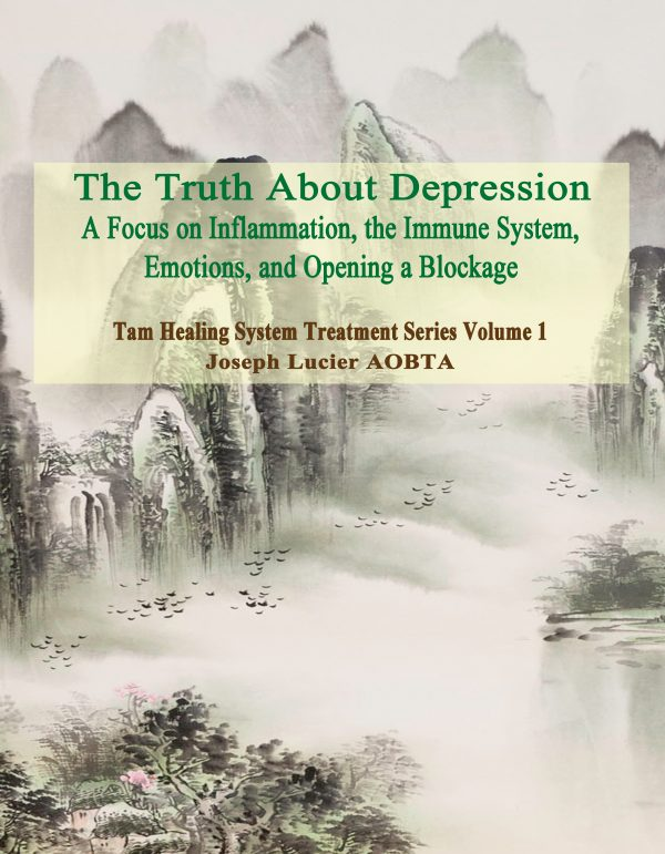 The Truth about Depression - It is an Immune System Issue - Paperback Book by Joseph Lucier AOBTA