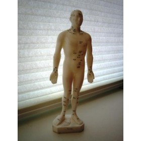 Tong Ren Acupuncture Doll